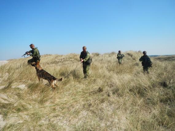 Hunden är en hittills oöverträffad sensor i spaning mot motståndarens patruller.