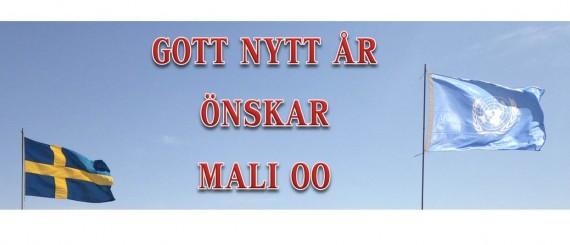 NYÅRSBILD1